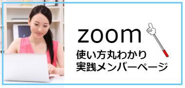 zoomsaido