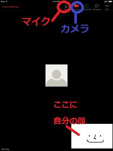 zoom1113